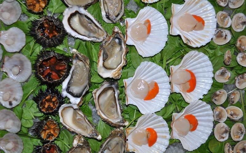 Assortimento di molluschi