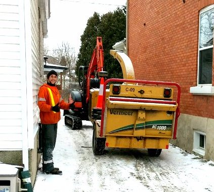 Tree chipping in Guelph Ontario.