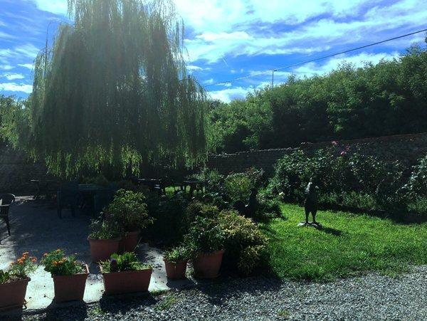 giardino con un salice piangente