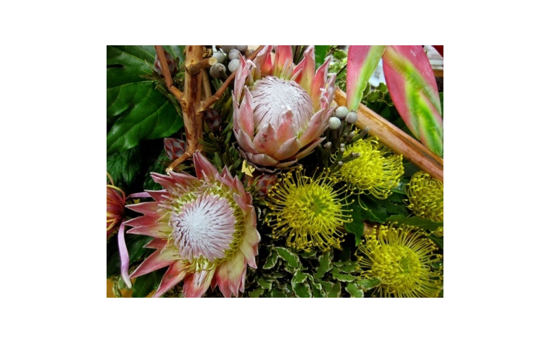 fiori santi