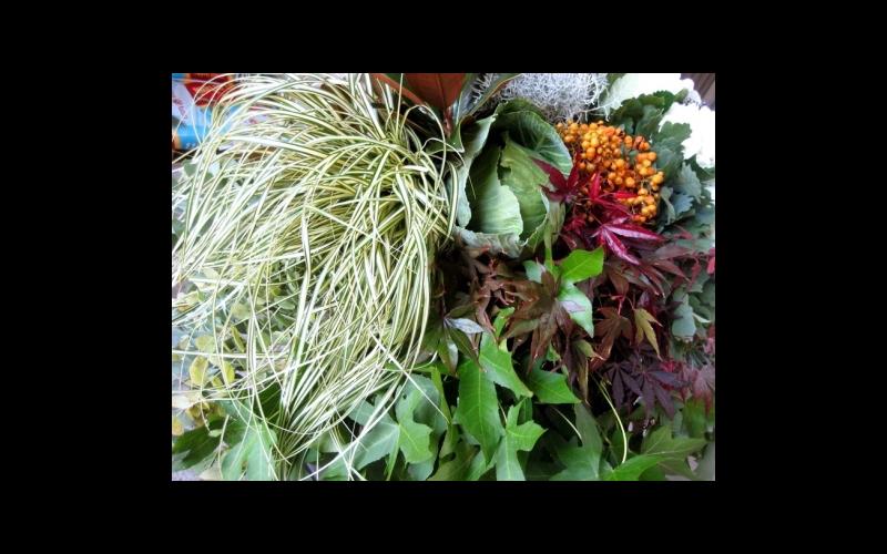 elegante composizione di fiori e verde