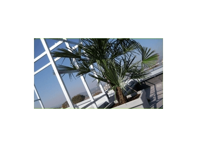 progettazione terrazzi