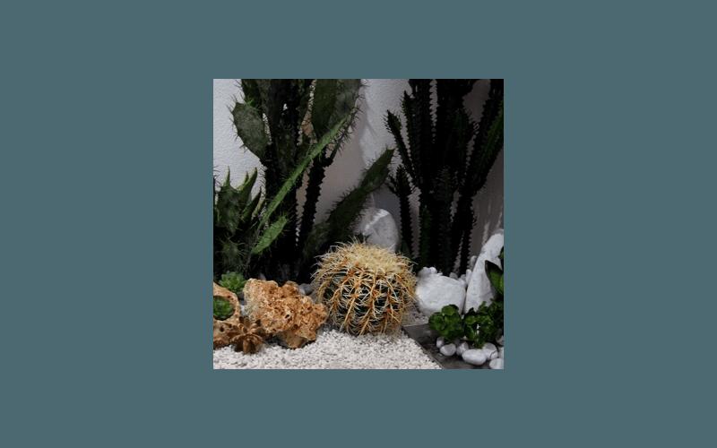 piante grasse artificiali