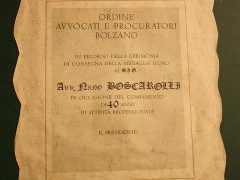 Nino Boscarolli, Lawyer