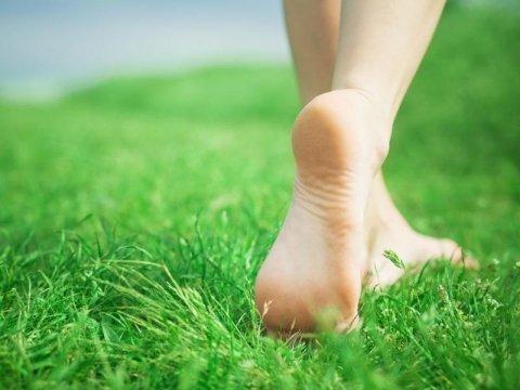 piedi che camminano sull`erba