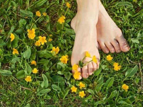 piedi in un prato con fiori gialli