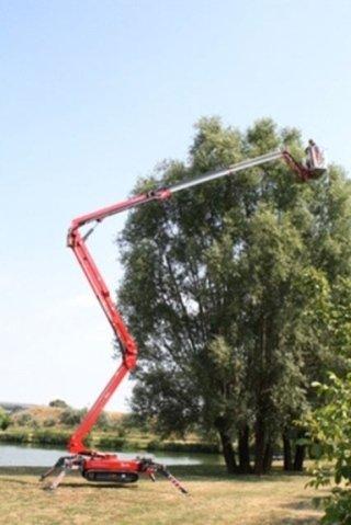 lavori edili, potatura piante, manutenzione piante