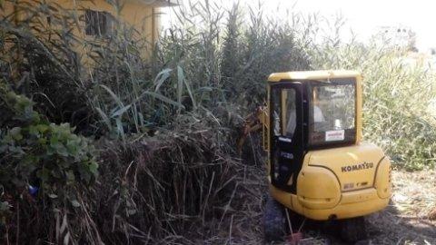 spianamento terreno, manutenzione terreni, erbacce
