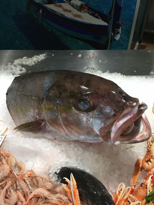 solo piatti cucinati con il pescato del giorno, per garantirti il sapore del mare
