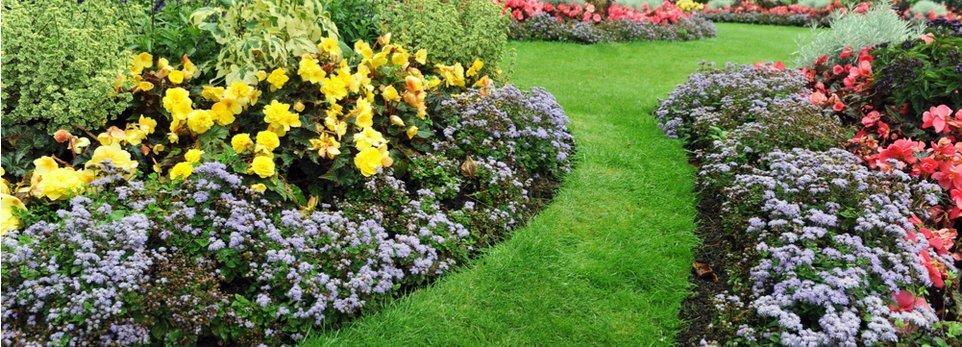 Le 8 Regole Base Per Progettare Un Giardino