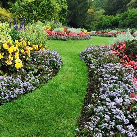 Le 8 regole base per progettare un giardino - Progettare un giardino ...
