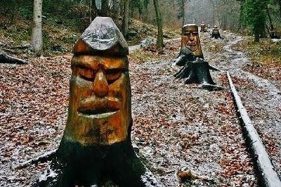 il bosco degli gnomi
