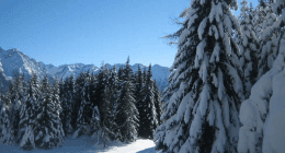 itinerari turistici, escursioni, gite