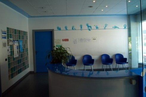 clinica veterinaria, ambulatorio per animali, cure veterinarie