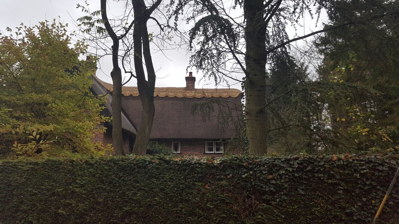A cottage with a thatched roof