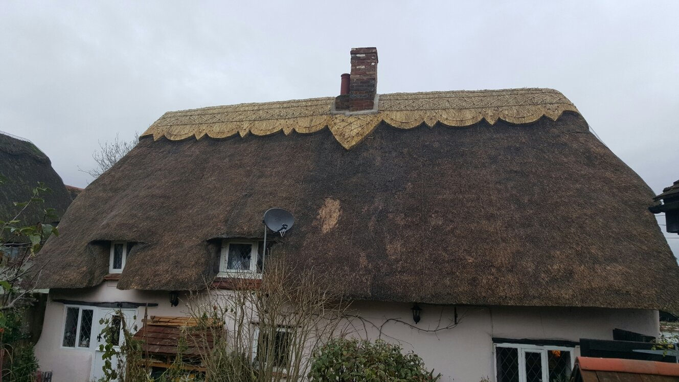 A property with a stunning thatch design