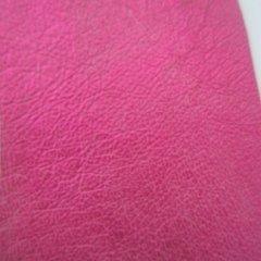 rosa ruvido