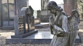 disbrigo pratiche funerarie, onoranze funebri, cremazione