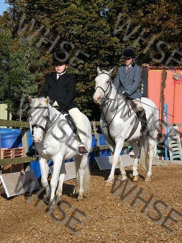 horse riders assembling