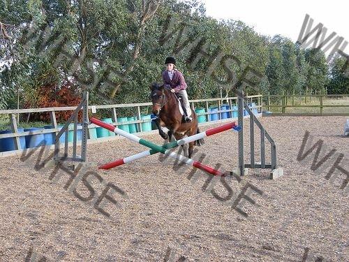 horse race course
