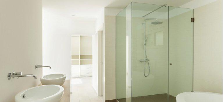 Thomos home improvement shower screen