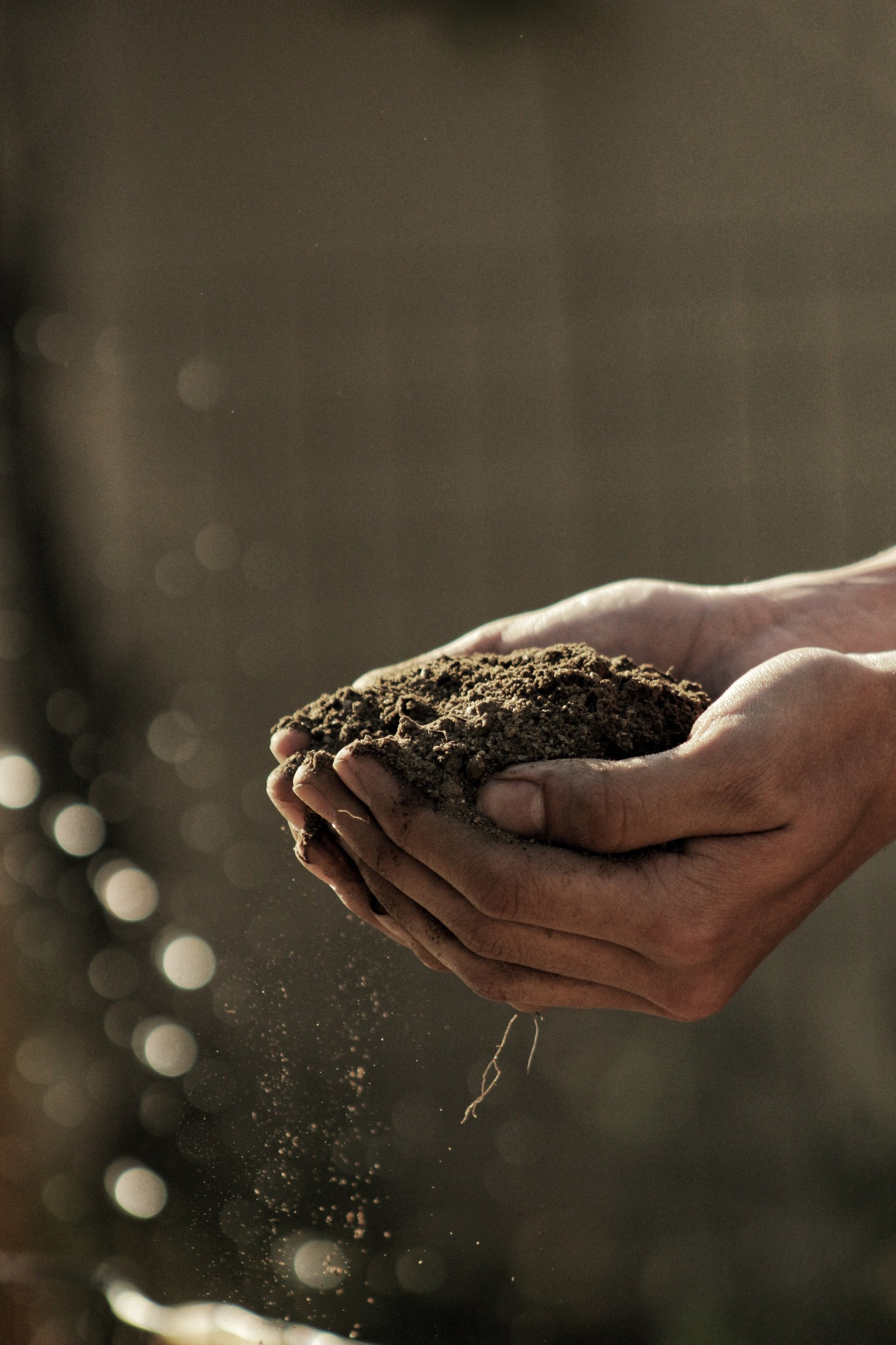 A handful of dirt after a successful dirt delivery in Cabarrus County, NC