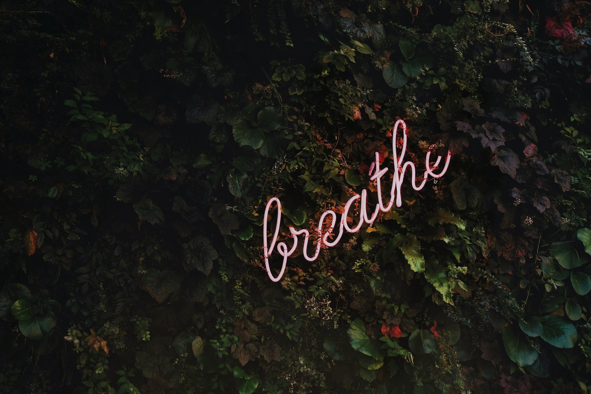 Try This Breath Technique For Enhanced Mental Energy