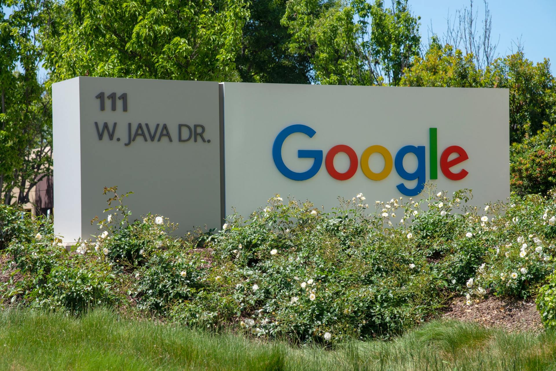 Google Address sign for penalty reconsideration