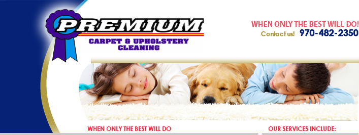 Carpet Cleaning Furniture Cleaning Fort Collins Loveland