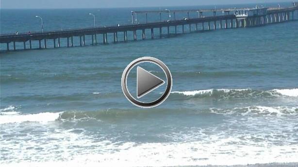 Ocean Beach Live View